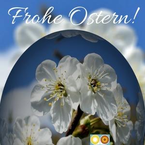 Frohe Ostern von den VT Friday News!